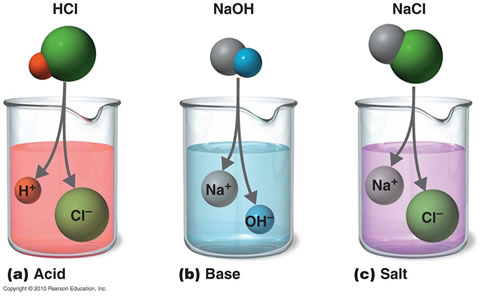Image result for acids bases salts in water